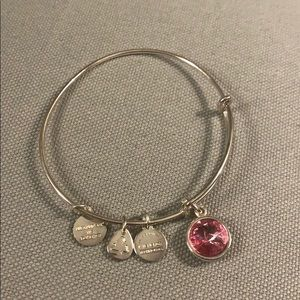 Alex and Ani Charm bracelet in silver